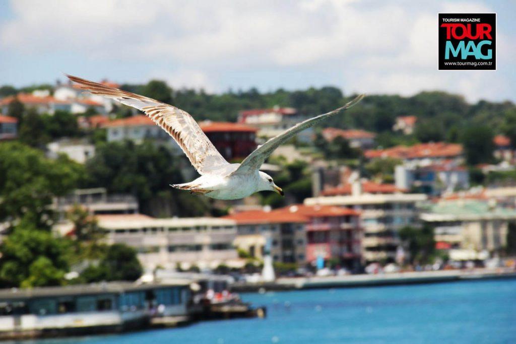 istanbul-bogaz-turu-saffet-emre-tonguc-kalamis-rotary-kulubu-kadikoy-life-dergisi-tourmag-turizm-dergisi (7)