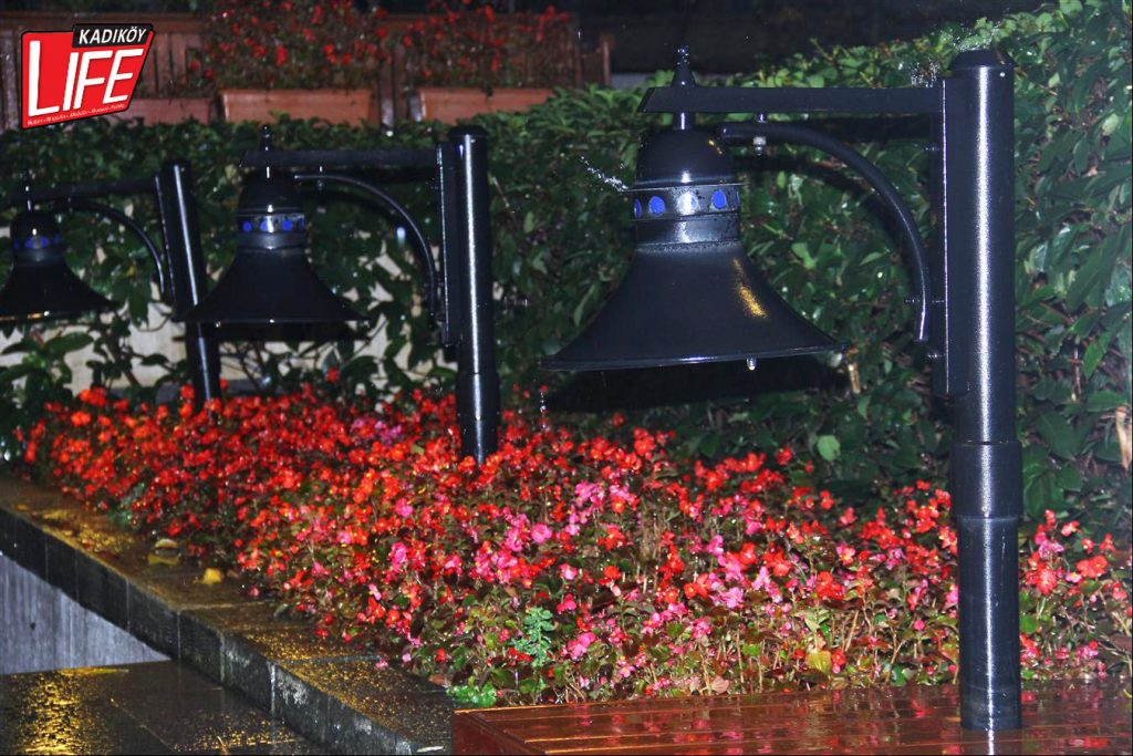 Çiçekler sadece yazın değil, soğuk yağmurlu kış günlerinde de Vino'nun bahçesini ve pencerelerini süslüyor...