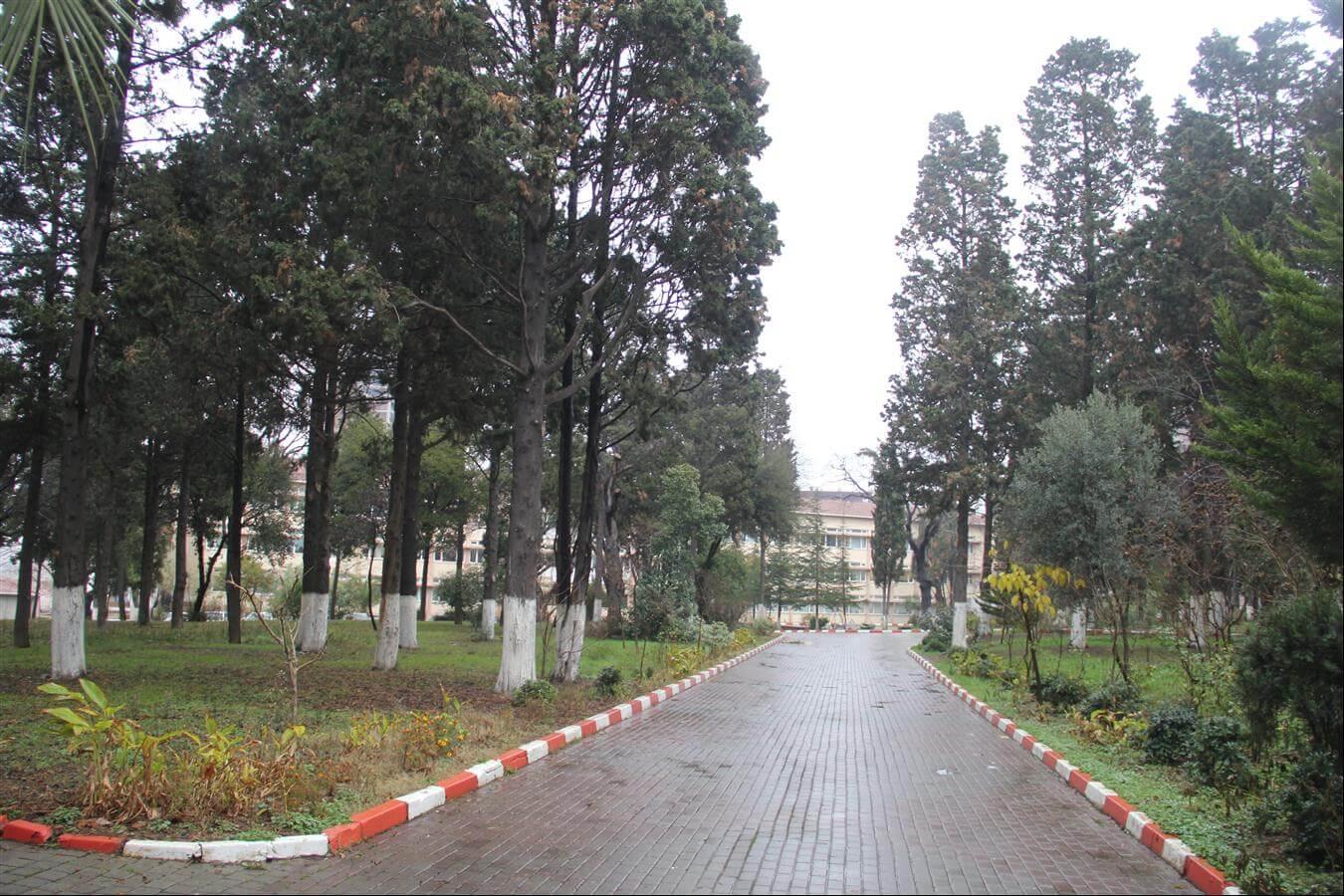 Atatürk Fen Lisesi