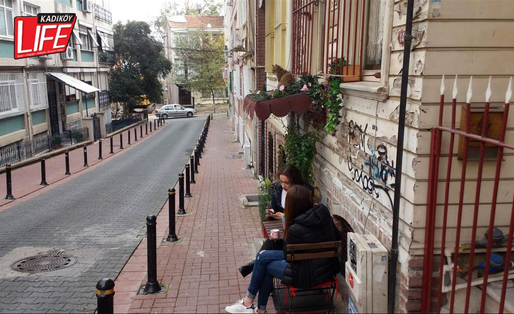 kediler-sokak-arabalar-otomobil-tavanini-sahiplenen-sokak-kedileri-istanbul-kadikoy-life-dergisi-1