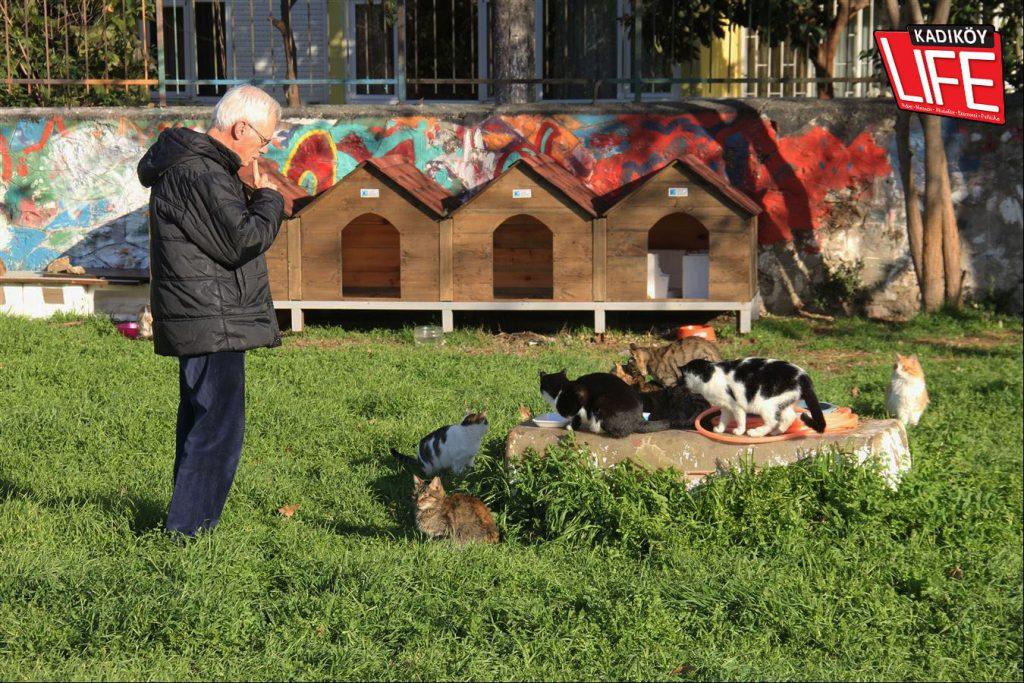 moda-bostani-sokak-kediler-kopekler-hayvanseverler-caferaga-mahallesi-muhtari-zeynep-ayman-kadikoy-life-dergisi-8